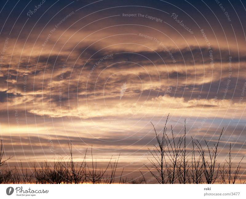 Abendhimmel Himmel Wolken