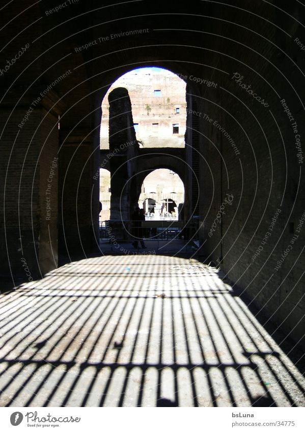 Einblick Colloseum Spielen Architektur Kunst Italien Bauwerk Ruine Sehenswürdigkeit Gitter antik Rom Bekanntheit Arena Lebensmittel