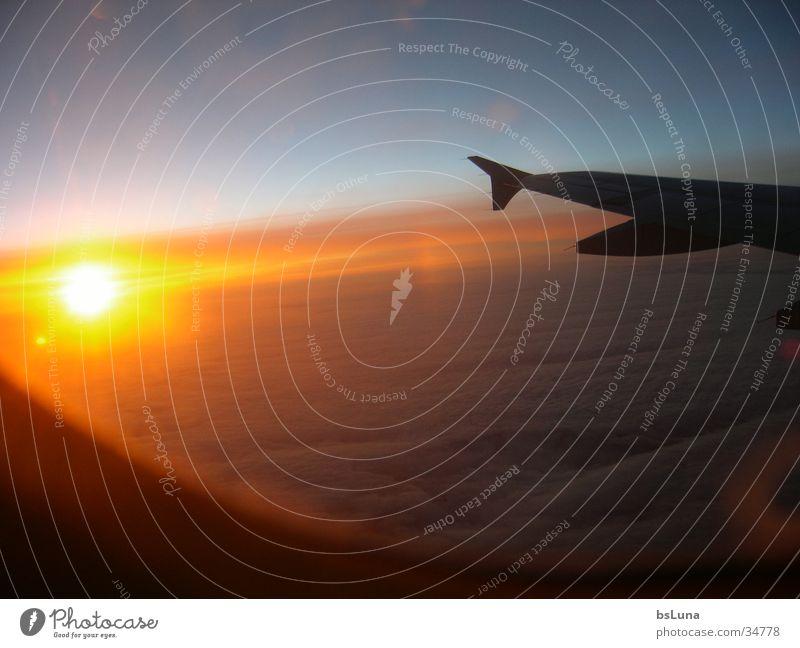 we love germanwings Sonnenuntergang Flugzeug Wolken Licht strahlend Luftverkehr Himmel Flügel