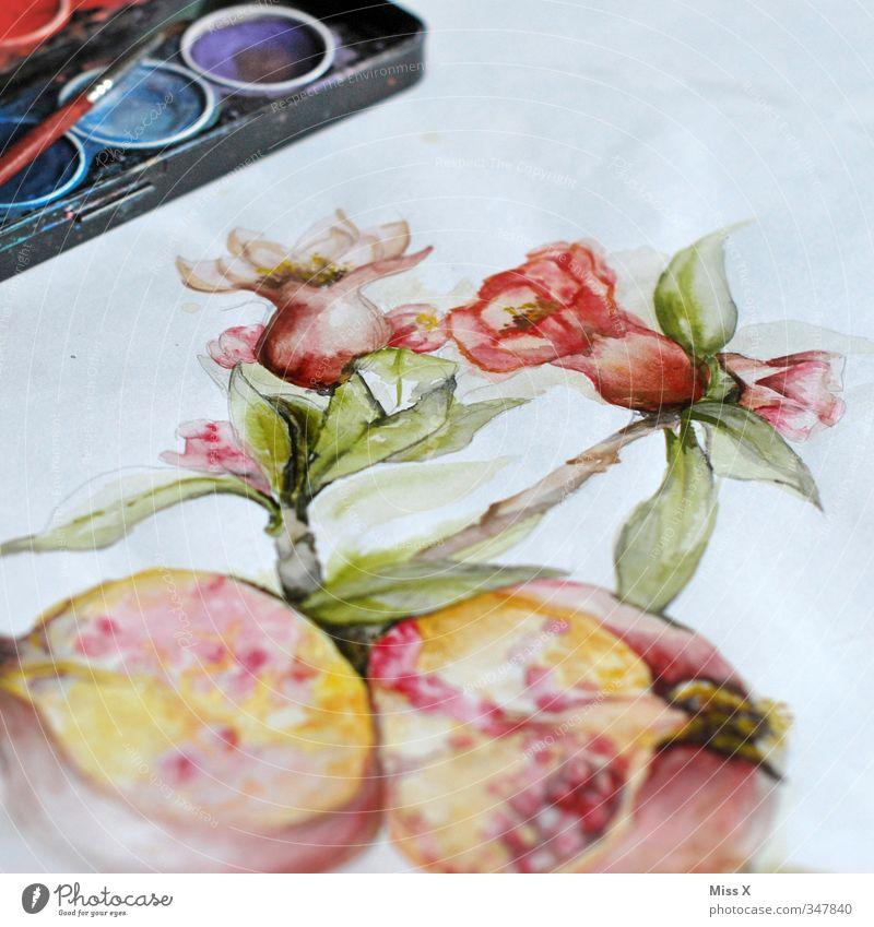 Aquarell Freizeit & Hobby Kunst Kunstwerk Gemälde zeichnen mehrfarbig Kreativität malen Farbstoff Farbkasten Pinsel Granatapfel Blüte Farbenspiel Papier