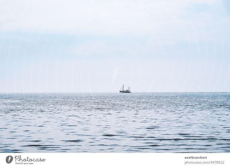 entfernter Krabbenkutter auf der Nordsee Boot Schiff Meer Krabbenfischer Fischen Wasser Deutschland Fischereiwirtschaft Ruhe Natur blau Trawler Garnelenfänger