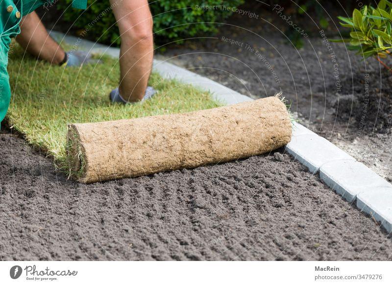 Rollrasen anlegen Außenaufnahme erde fertigrasen Garten gartenbau gartengestaltung Gras Grasnabe Grün landschaftsbau landschaftsgärtner mutterboden Natur pflege