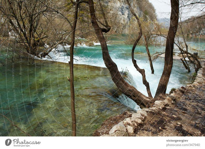 Plitvicer Seen, Kroatien Umwelt Natur Landschaft Wasser Frühling Herbst Klima Klimawandel Wetter schlechtes Wetter Sturm Baum Wald Seeufer Flussufer Wasserfall