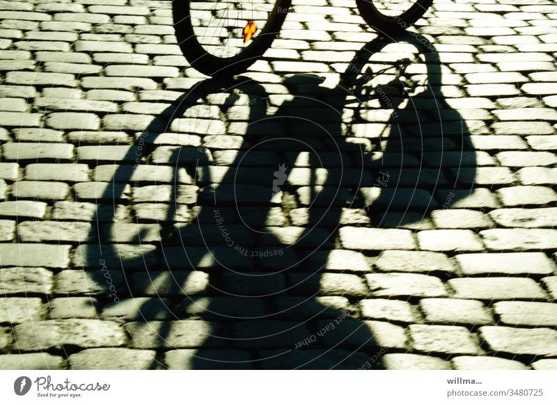 Radtour übers Kopfsteinpflaster Radfahren Schatten Radeln Fahrrad sonnig Fahrradfahren Bewegung an frischer Luft Straße Freizeit & Hobby Verkehrsmittel Radsport