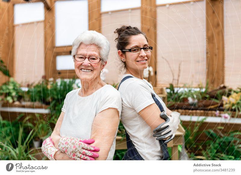 Zuversichtliche Gärtnerinnen, die für die Kamera lächeln Frauen positiv Arbeit Zusammensein Lächeln Gewächshaus Pflanze älter Gartenbau organisch Glück Pflege