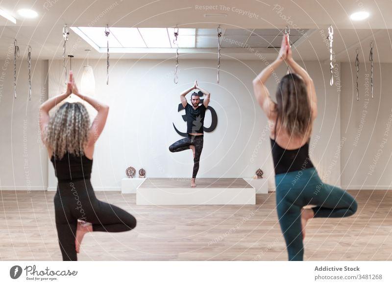 Gruppe von Leuten, die im Yoga-Kurs Baumposen machen Frauen Mann Lotus-Pose Raum Klasse Körper Gesundheit Mudra Erholung Training Zusammensein Wellness