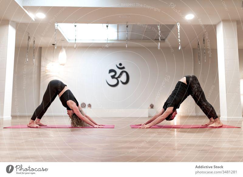 Mann und Frau praktizieren gemeinsam Yoga in nach unten gerichteter Hundehaltung sportlich positionieren üben Dehnung Klasse Training beweglich Übung Pose