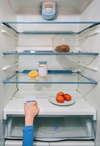 Mädchenhand nimmt den letzten Joghurt aus dem Kühlschrank Weltwirtschaftskrise Coronavirus unkenntlich Hand Kind hungrig kein Essen Küche Menschen heimwärts