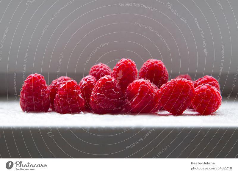 Frisch geerntete Himbeeren: eine Köstlichkeit! Früchte Beeren Sommer Ernte frisches obst frische früchte Hochgenuss Gesundheit Vitaminbombe Lebensmittel