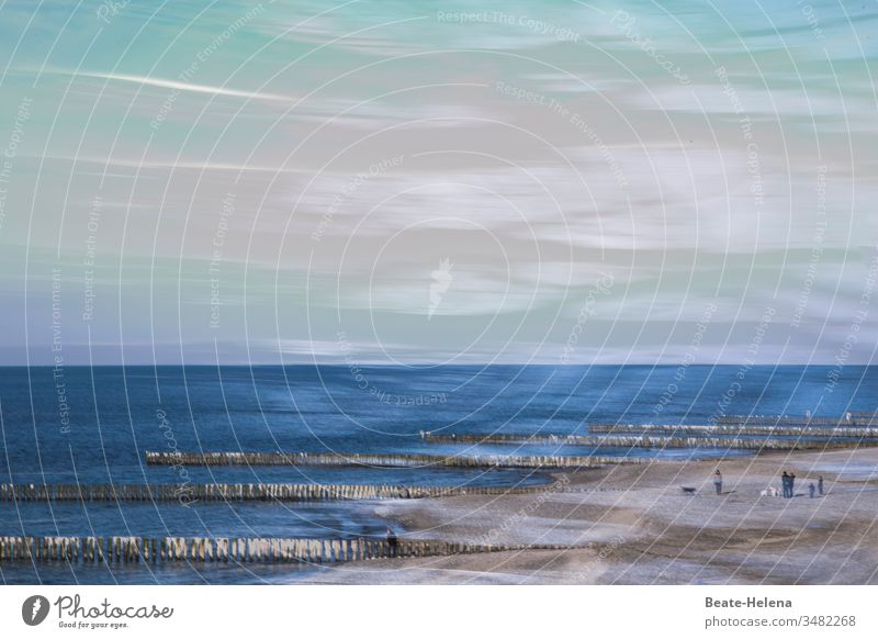 Begegnung mit der Natur Meer Ostsee Bodden Urlaub Erholung Spazieren Strand Ferien & Urlaub & Reisen Küste Himmel Sand Tourismus Wasser Wellen Außenaufnahme