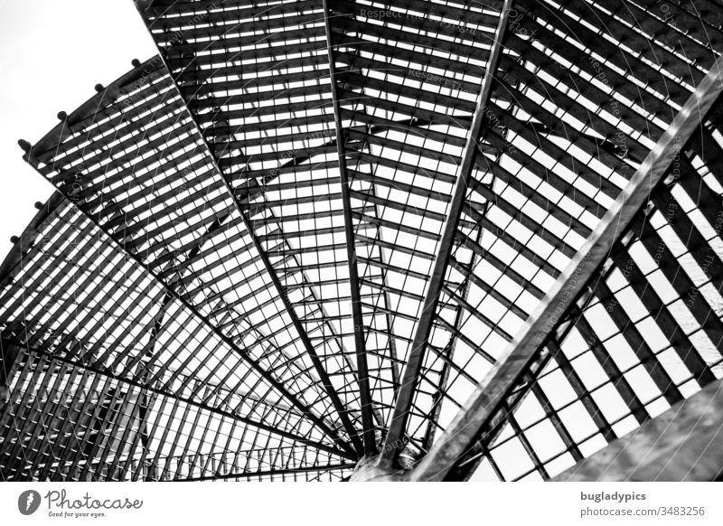 Eine Feuertreppe / Wendeltreppe von unten fotografiert in schwarzweiß Metalltreppe Architektur Fibonacci Schwarzweißfoto Gitter Gitterrost Spirale Geometrie