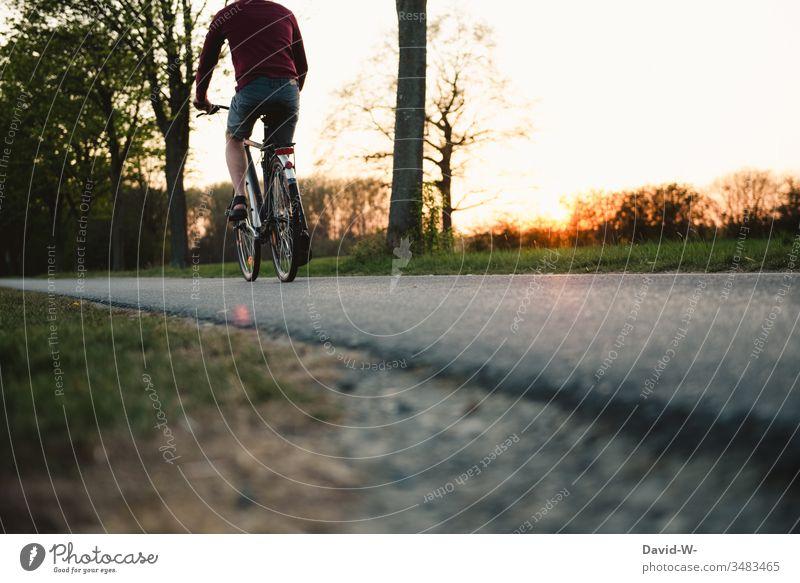 junger Mann fährt mit dem Rad Feldwege Fahrrad Fahrradfahren Natur Fahrradtour Fahrradweg Verkehr Tag Wege & Pfade Farbfoto Außenaufnahme Verkehrsmittel