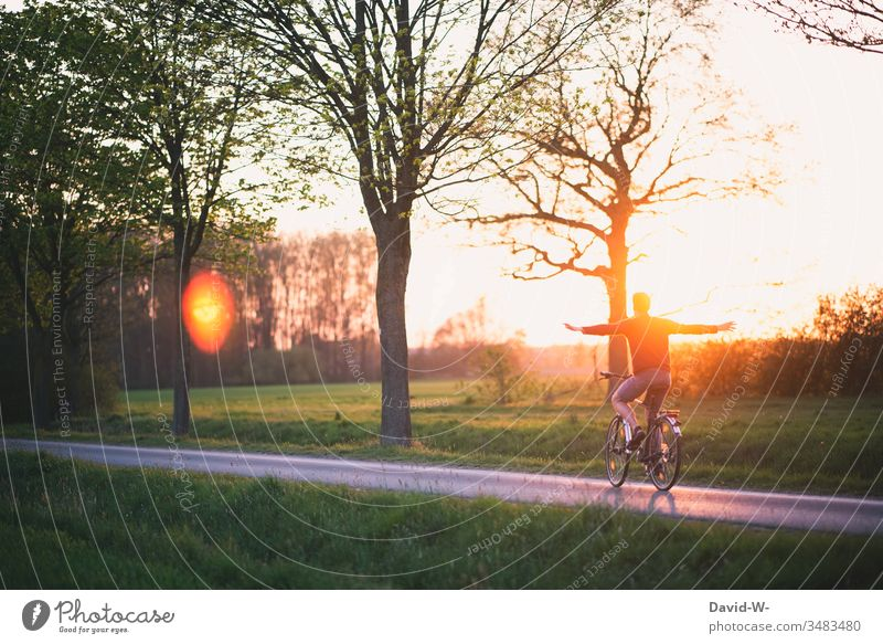 Ich kann fliegen Mann fährt mit dem Fahrrad Natur Sonnenuntergang Sonnenlicht freihändigfahren Freiheit Schwerelosigkeit schwerelos Fahrradfahren Fahrradtour