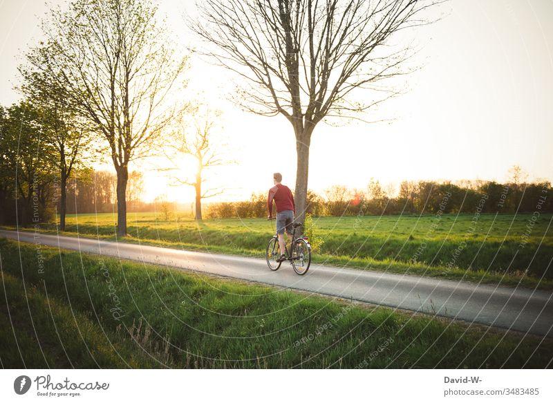 Mann fährt im Sonnenlicht mit dem Fahrrad übers Land fahren Fahrradfahren Fahrradtour Außenaufnahme Wege & Pfade Farbfoto Bewegung Tag Freizeit & Hobby