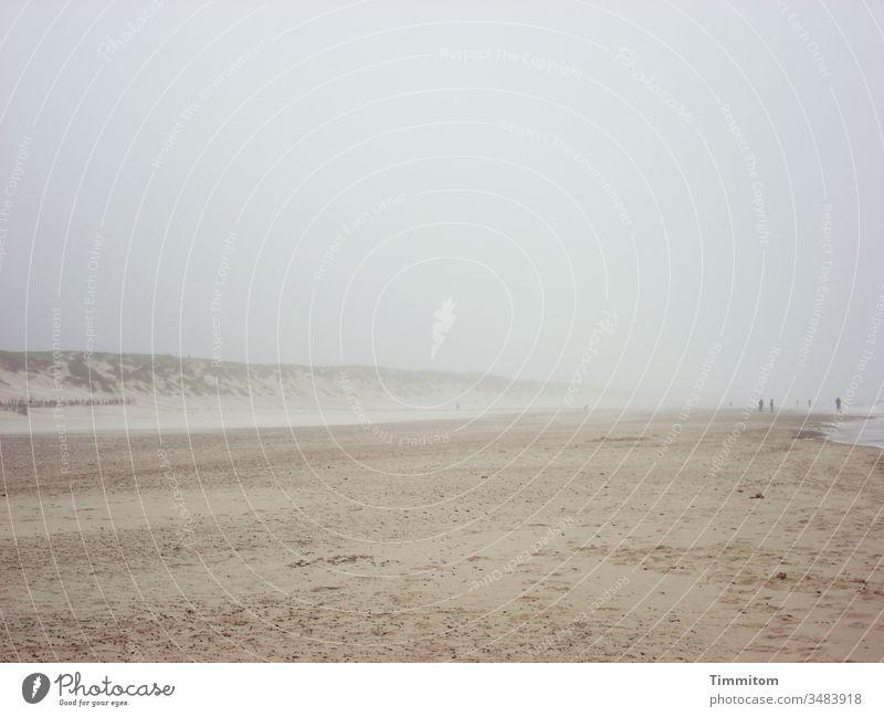 Geräusche   von Wind und Wellen an dänischem Strand Dänemark Sand Dünen Menschen Nordsee Urlaub Natur Sturm