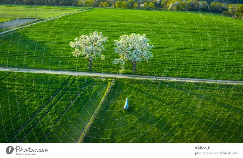 Luftaufnahme der Frühjahrsblüte Obstbäume auf grünen Agrarflächen Remagen Deutschland oben Antenne landwirtschaftlich Ackerbau Apfel Hintergrund Überstrahlung