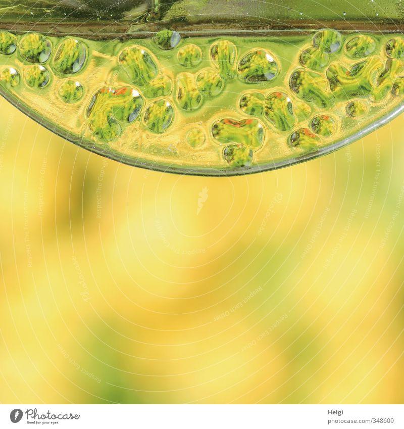 gelb-grün... Dekoration & Verzierung Glas Ornament ästhetisch außergewöhnlich einfach schön einzigartig modern bizarr Farbe Kunst Ordnung Surrealismus