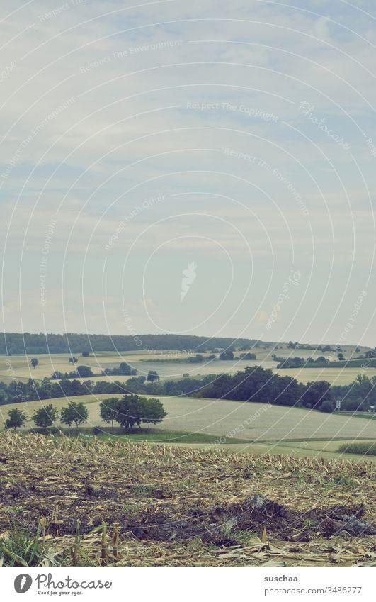 sommerliche landschaft über felder und äcker mit blick in die ferne Landschaft Landwirtschaft Ackerbau Felder Anbau Wiesen Büsche Bäume Natur Deutschland