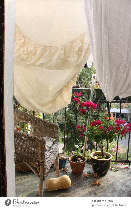 Bettwäsche auf Balkon Wäscheleine Wäsche waschen trocknen aufhängen Haushalt Häusliches Leben Haushaltsführung Waschtag Balkonblumen Balkonleben Balkonien