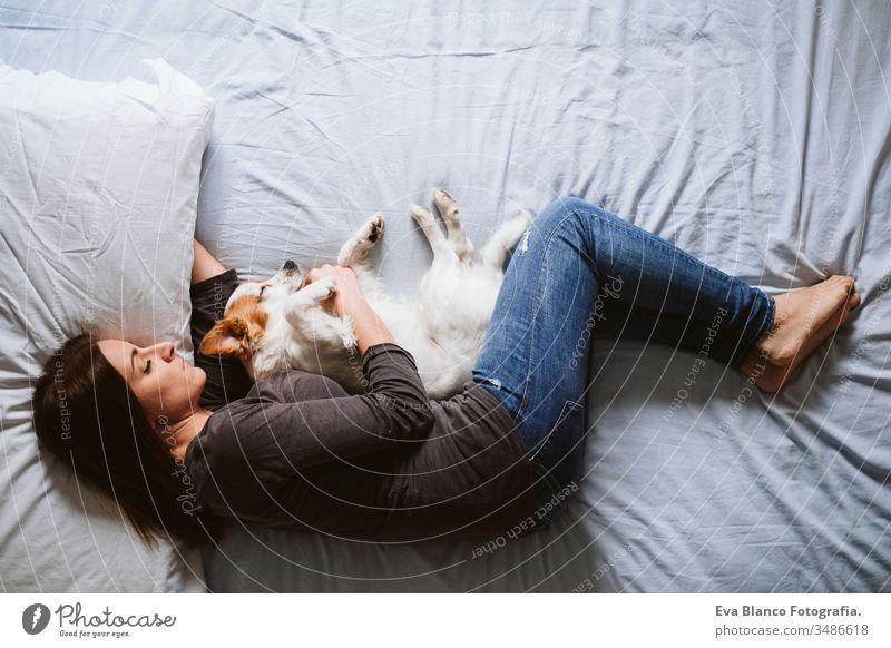 junge Frau und Hund zu Hause auf dem Bett liegend. Liebe, Zweisamkeit und Haustiere im Haus heimwärts aussruhen schlafen Zusammensein Zusammengehörigkeitsgefühl