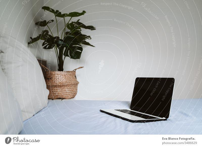 Komfortabler Arbeitsplatz, Fernarbeit. Offener Laptop auf dem Bett. Computer Technik & Technologie niemand heimwärts im Innenbereich Pflanze Büro arbeiten