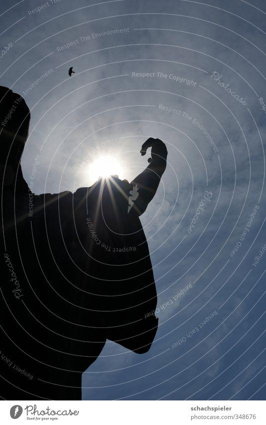 Auferstehung II Skulptur Himmel Wolken Sonne Sonnenlicht Schönes Wetter Tier Vogel Rabenvögel 1 dunkel blau schwarz weiß Ewigkeit Hoffnung Tod Religion & Glaube