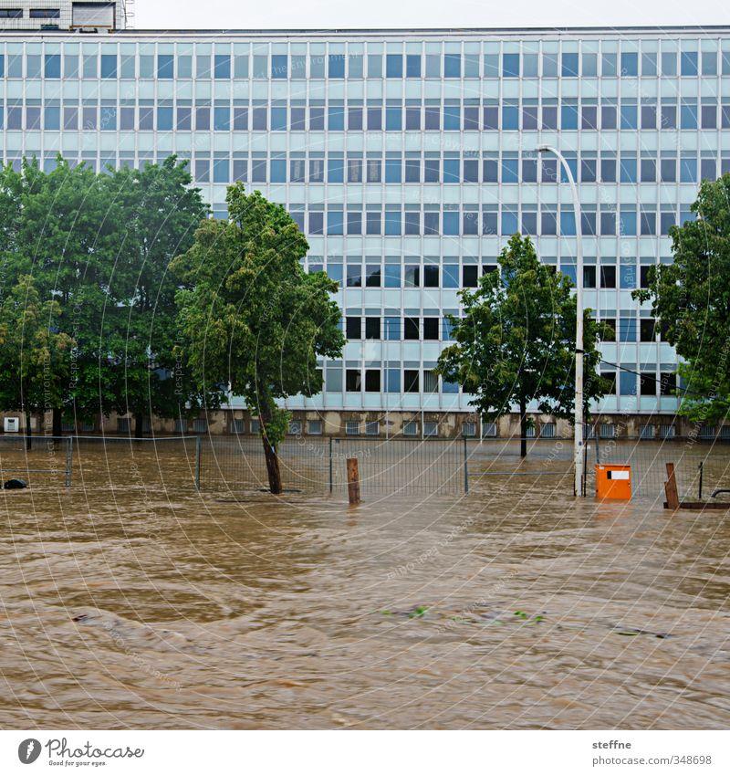 Wasserstraße Umwelt Natur Klima Klimawandel Wetter schlechtes Wetter Regen Baum Verkehr gefährlich Überschwemmung überschwemmt Hochwasser Flutwelle Farbfoto