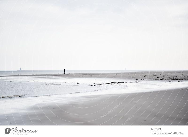 Mensch allein am Strand Nordseeküste Einsamkeit alleine Küste Meer Außenaufnahme Insel Erholung Wattenmeer Sandstrand seichtes Wasser Winter Wolkenloser Himmel