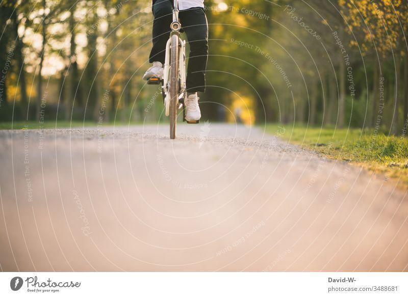 Junger Mann unterwegs Rad II Fahrrad Verkehr Straße Fahrradweg fahren Verkehrsmittel Verkehrswege Wege & Pfade Fahrradfahren Bewegung Straßenverkehr Fahrradtour