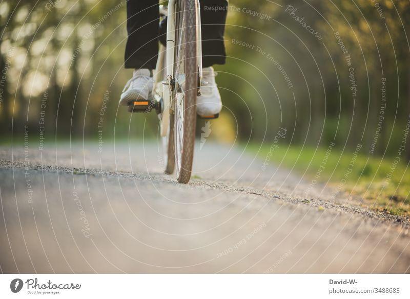 Junger Mann unterwegs Rad III Fahrrad Verkehr Straße Fahrradweg fahren Verkehrsmittel Verkehrswege Wege & Pfade Fahrradfahren Bewegung Straßenverkehr