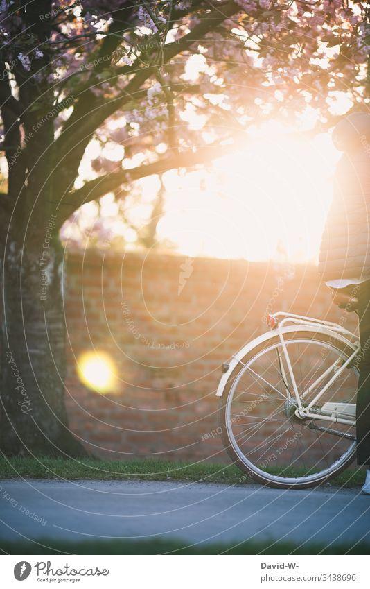 fahrradfahren durch die Natur im Sonnenuntergang Mann mit Fahrrad Fahrradfahren Fahrradtour Sonnenlicht anonym Schönes Wetter spass Freude enstpannung