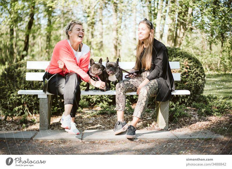 Freundinnen Spaziergang Hunde Freundschaft Zusammensein Freude Lifestyle Außenaufnahme Fröhlichkeit Lächeln Menschen Liebe Familie & Verwandtschaft Glück Natur