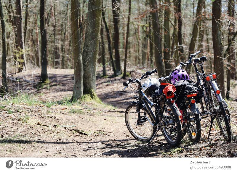 Fahrräder einer Familie bei einer Radtour auf einem Waldweg Fahrrad Fahrradhelm Kinderfahrrad Fahrradfahren Fahrradtour Sonne