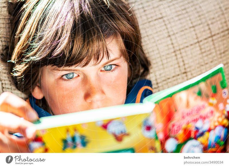 druckerzeugnis | bunte bilder konzentriert Kind vertieft Kindheit Junge Farbfoto lesen Buch lernen Bildung Kindererziehung Literatur Konzentration nachdenklich