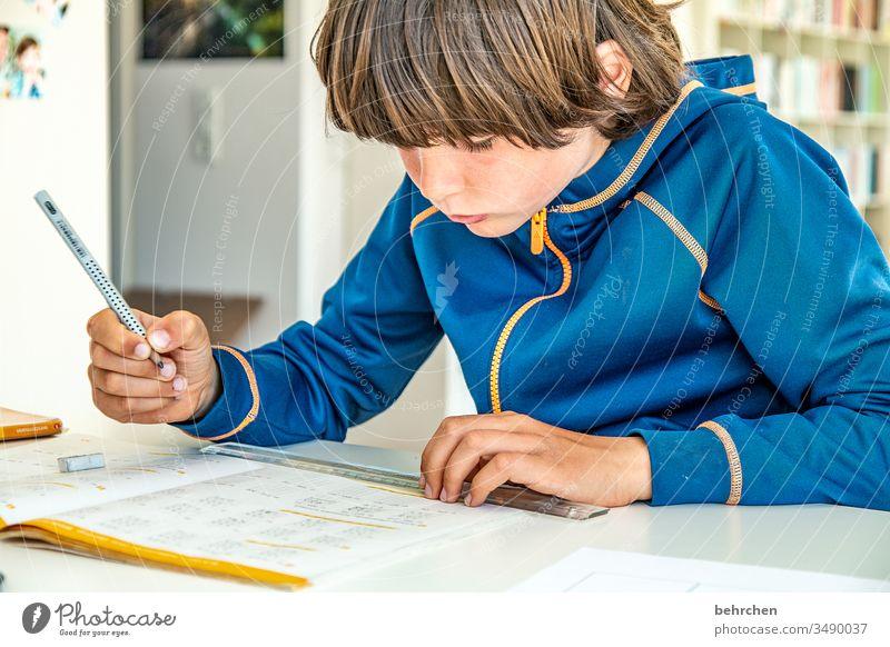 homeschooling | the last one (bevor es wieder los geht) angestrengt anstrengen konzentriert Konzentration Füller Homeschooling Homeoffice Bildung rechnen