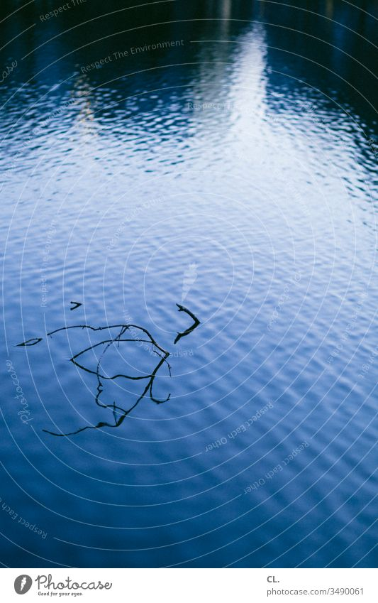 wasseroberfläche Wasser Wasseroberfläche Zweig Zweige u. Äste abstrakt See Teich Wasserspiegelung Reflexion & Spiegelung ästhetisch Menschenleer Außenaufnahme