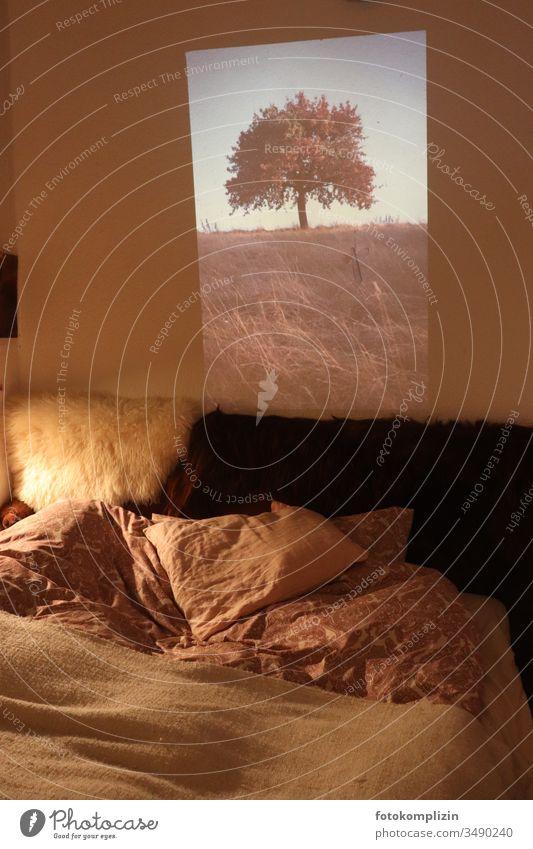Diaprojektion im Zimmer_ innen und außen diaprojektion Projektion Projektionsleinwand Baum drinnen zwei welten Bett zuhause Traumwelt ausblick Illusion
