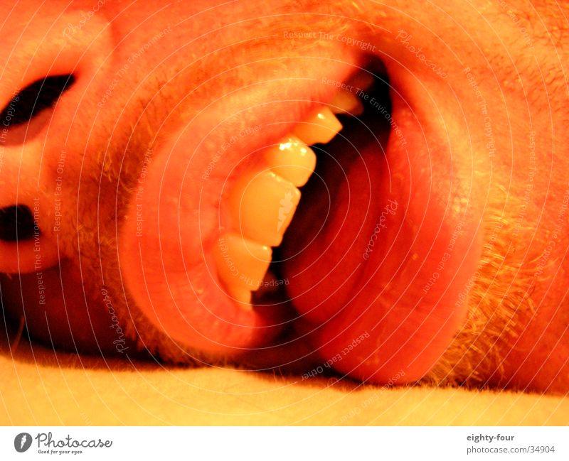 visage Mann Gesicht Tod lachen Zufriedenheit Zähne Zunge Zahncreme sabbern