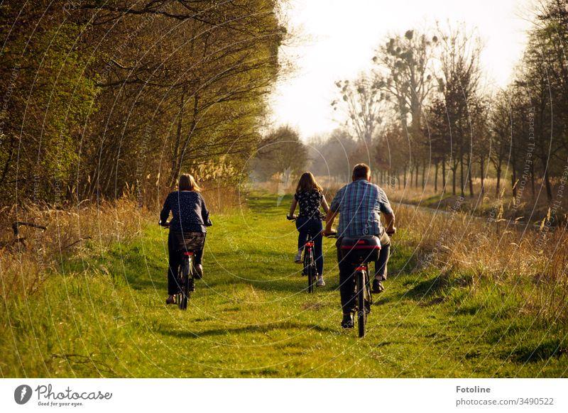 Sonntagsausflug - oder ein Vater, der mit seinen Teenagertöchtern eine Fahrradtour durch das Naturschutzgebiet Drömling macht. Fahrradfahren Außenaufnahme Tag