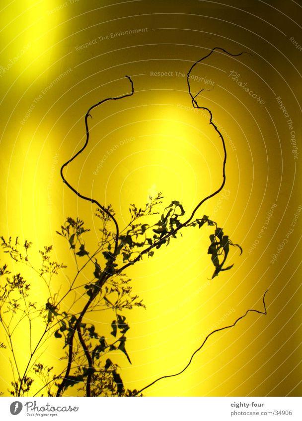 neonsträucher Pflanze Wärme Sträucher Dekoration & Verzierung Physik Zweig Neonlicht grell