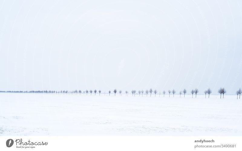 Die Straße im Schnee Allee Hintergrund schön blau verschwommen chaotisch übersichtlich kalt cool Textfreiraum Land Gefahr gefährlich Feld frieren Frost gefroren