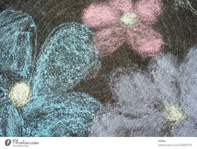 urbanes Freiluftatelier | Dreiklang blumen asphalt zeichnung kreide kinderzeichnung spielen bunt draußen straße kreidezeit blüten vogelperspektive
