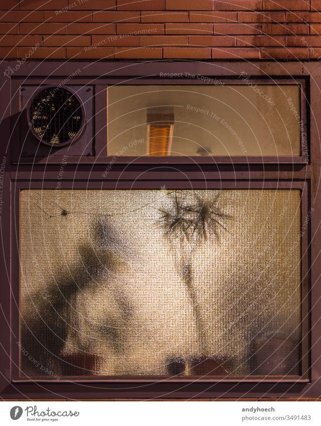 Die Zimmerpflanzen stehen abends hinter einem Glas Milch abstrakt Alabaster-Glas Architektur Hintergrund hinten Gebläse Holzplatte braun Gebäude
