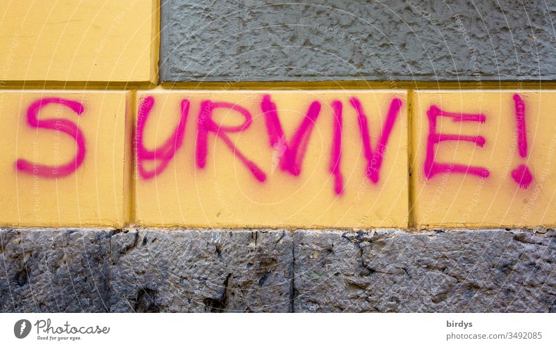 survive !, Überlebe !, gesprühter , Schriftzug in Englisch auf einer Hauswand in formatfüllender Nahaufnahme Überleben Aufforderung Mut Armut Klimawandel