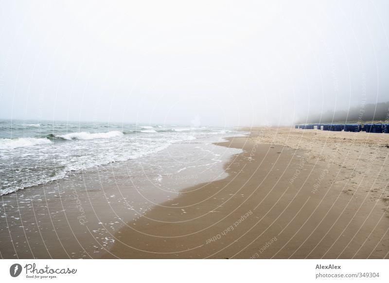 Ferien im Nebel Ferien & Urlaub & Reisen blau grün weiß Meer Ferne Strand kalt Umwelt gelb natürlich Küste grau Sand Zufriedenheit Tourismus
