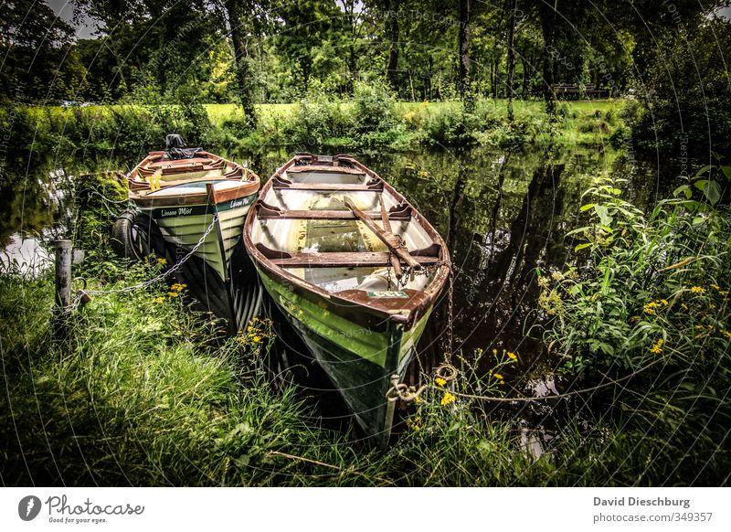 Einsteigen, ablegen, entspannen... Natur Ferien & Urlaub & Reisen grün Wasser weiß Sommer Pflanze Baum Sonne Landschaft Erholung schwarz Frühling Küste See