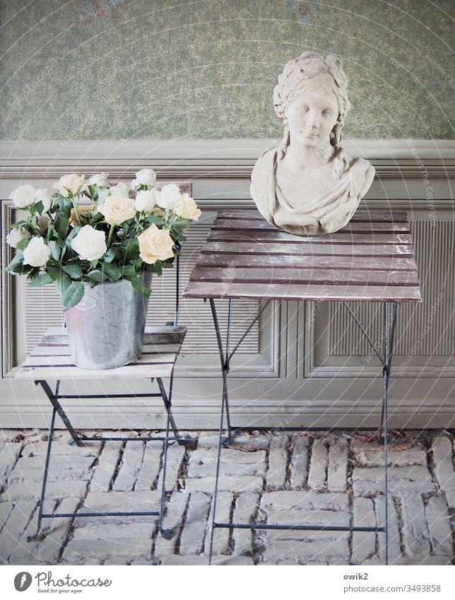 Weiße Rosen Durchgang Wand Kopfsteinpflaster Klapptisch Hocker einfach alt Blumentopf Eimer Torso Figut Skulptur Frau Barock Gesicht Stilleben