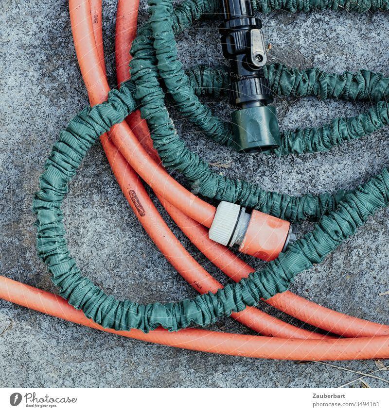 Ein roter und ein grüner Gartenschlauch in zarter Umschlingung erwägen eine nähere Verbindung Schlauch gießen Anschluss Verbindungsstück Wasser bewässern
