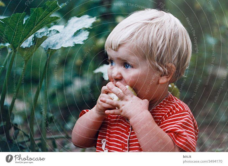 Vom Apfel zum Apfelbrei machen. Kind Mädchen Essen Appetit & Hunger Lebensmittel Ernährung Gesundheit Frucht Bioprodukte Vegetarische Ernährung lecker frisch