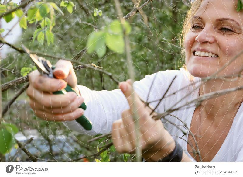 Gärtnerin lächelt und schneidet einen Zweig mit der Gartenschere schneiden lächeln beschneiden grün T-Shirt weiß Hände Mensch schön Natur Frühling